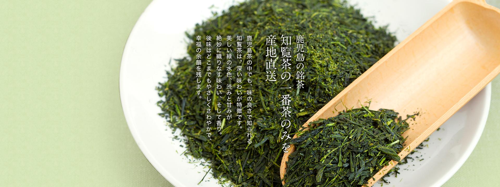 鹿児島の銘茶、知覧茶の一番茶のみを産地直送